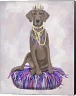 Weimaraner on Purple Cushion Fine-Art Print