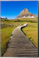 Hidden Lake Trail At Logan Pass, Glacier National Park, Montana Fine-Art Print