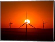 Windmills At Sunset, Washington Fine-Art Print