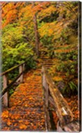 Autumn Maple Leaves On A Bridge Fine-Art Print