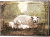 Vintage Ewe and Sleeping Lambs Fine-Art Print