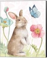 Spring Softies Bunnies  II Pink Fine-Art Print