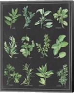 Herb Chart on Black White Border Fine-Art Print