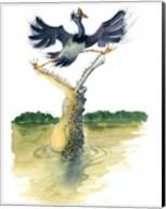 Gator Fine-Art Print