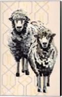 Woolly Two Fine-Art Print