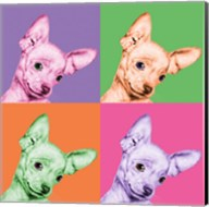Sweet Chihuahua Pop Fine-Art Print