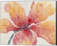 Blooming Hibiscus Fine-Art Print