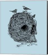 Skull Nest Fine-Art Print