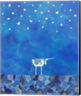 Stars at Night Fine-Art Print