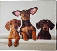 3 Amigos Fine-Art Print