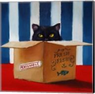 Cat Burglar Fine-Art Print