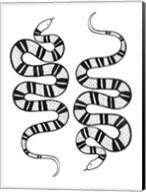 Epidaurus Snake II Fine-Art Print