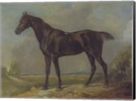 Golding Constable's Black Riding-Horse Fine-Art Print