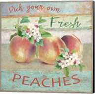 Farmers Market Peaches Fine-Art Print
