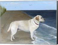 Enjoying The Ocean Fine-Art Print