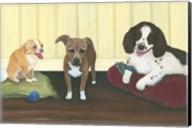 Three Pups Fine-Art Print