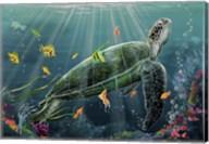 Reef Turtle Fine-Art Print