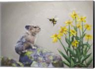 A Pika and a Bumblebee Fine-Art Print