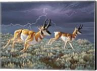 Thunder and lightning Fine-Art Print