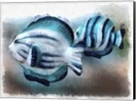 A Pair Of Angel Fish Fine-Art Print