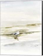 Coastal Gull I Fine-Art Print
