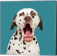 Pongo the Dalmatian Fine-Art Print