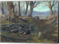 Tom Foolery Fine-Art Print
