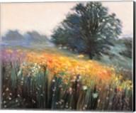 Misty Morning III Fine-Art Print