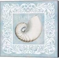 Sandy Shells Blue on Blue Nautilus Fine-Art Print