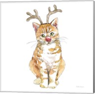Christmas Kitties III Square Fine-Art Print