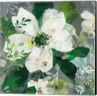 Anemone and Friends III Fine-Art Print