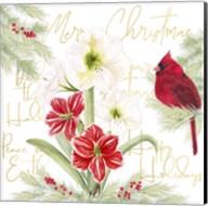 Merry Amaryllis III Fine-Art Print