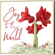 Merry Amaryllis V Fine-Art Print