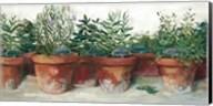 Pots of Herbs I White Fine-Art Print