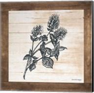 Petals on Planks - Mint Fine-Art Print