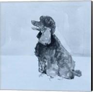 Pop Modern Dog V Fine-Art Print