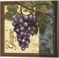 Fruit Illustration II Fine-Art Print