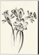 Ink Wash Floral I - Daffodils Fine-Art Print