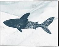 Shark Fine-Art Print