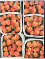 Farmer's Market Peaches Fine-Art Print