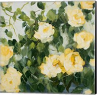 Yellow Roses II Fine-Art Print