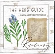 Herb Guide - Rosemary Fine-Art Print