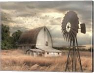Henderson Bay Farm Fine-Art Print