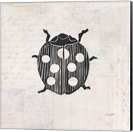 Ladybug Stamp BW Fine-Art Print