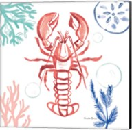 Coastal Jewels VI Coral Cove Fine-Art Print