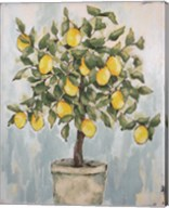Lovely Lemons Fine-Art Print