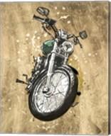 Metallic Rider II Fine-Art Print