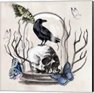 Nevermore II Fine-Art Print