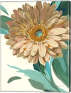 Jewel of the Garden II Fine-Art Print