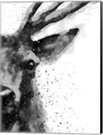 Deer At Attention Fine-Art Print